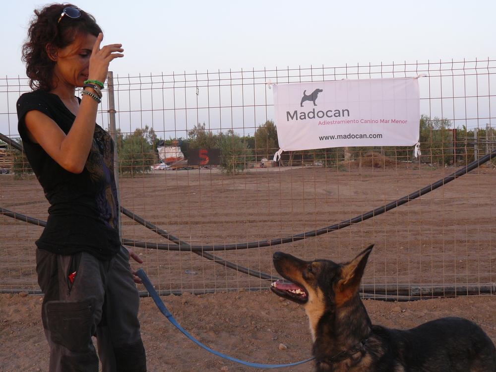 Un Centro Canino ofrece por primera vez en la Región de Murcia un Curso de Adiestrador Canino Profesional basado en técnicas de adiestramiento en positivo